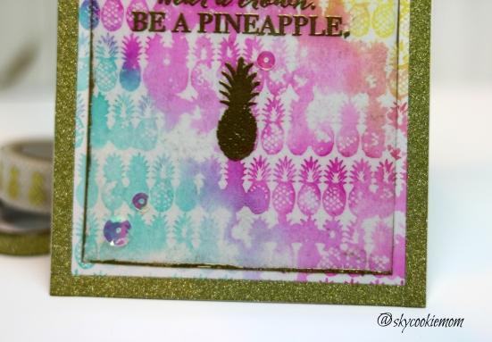 Ton_Pineapple1_CE2